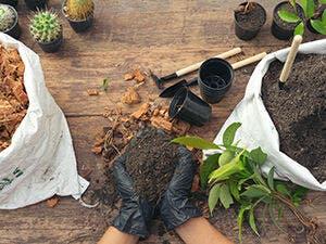 Herramientas para tener un jardín increíble